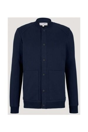 Tom Tailor Heren trui lm ronde hals Tom Tailor 1024914 10668 sky captain blue